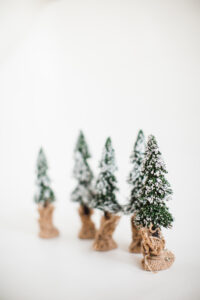 December Snowy Pine Trees