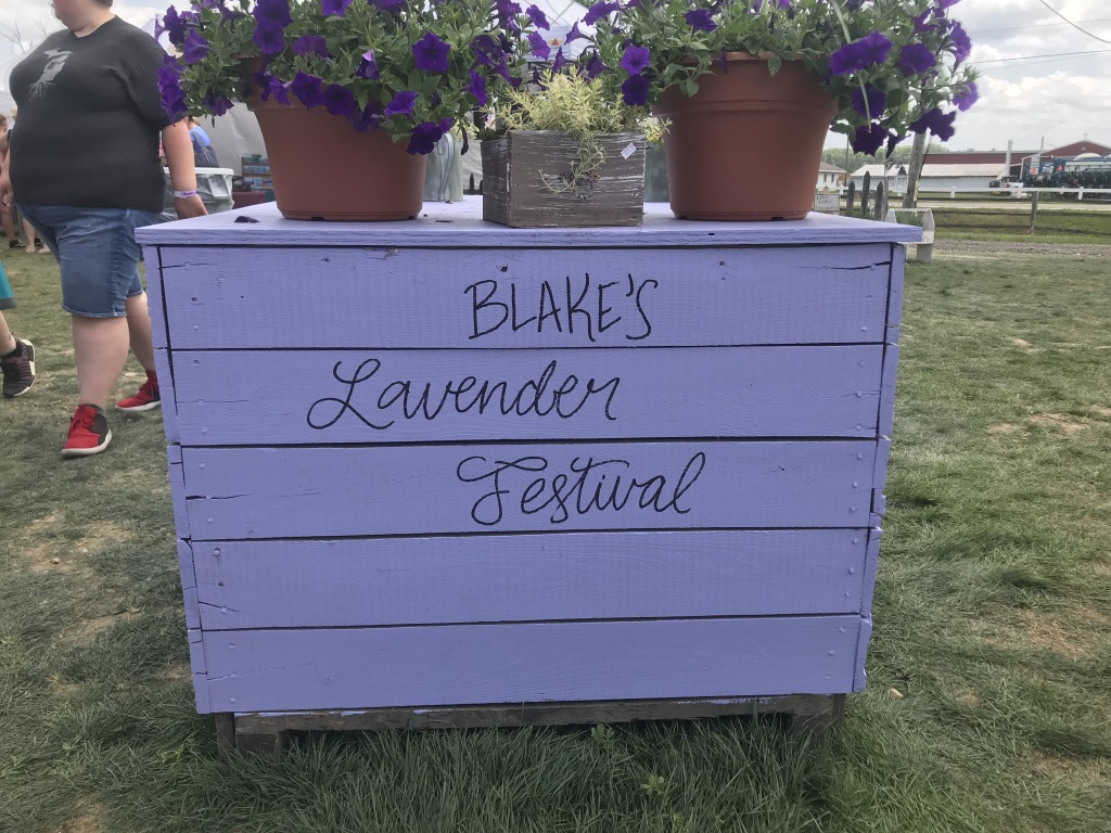 Blake's Lavender Festival